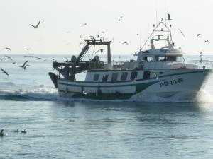 Photo of BERGANTI ship