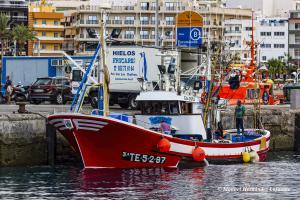 Photo of MARI GEMMA PRIMERO ship