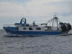 Photo of ARNAU I MARC NOU ship