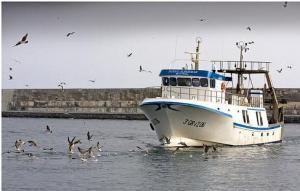 Photo of N SONDEMAR ship