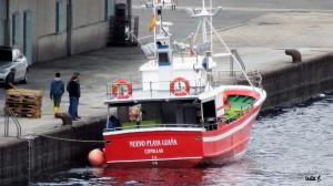 Photo of NUEVO PLAYA LUANA ship