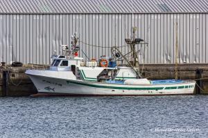Photo of SAN RAFAEL 1 ship