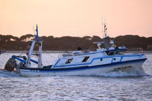 Photo of JOSE Y AMPARO ship