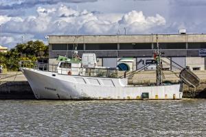 Photo of VELEZ MUNOZ ship