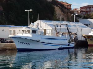 Photo of EL COMETIERRA ship