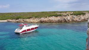 Photo of ALLA DINS ship