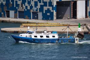 Photo of LA FERROSA ship