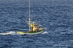 Photo of ANA CARMEN DOS ship