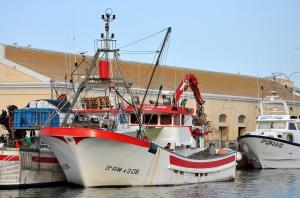 Photo of R0SALI Y CRISTIAN ship