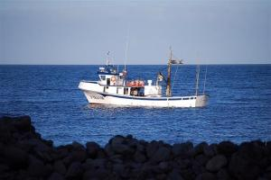 Photo of NUEVO AAIUN ship