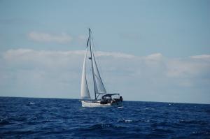 Photo of MARARIA ship