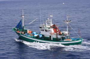 Photo of NUEVO QUIMAR ship
