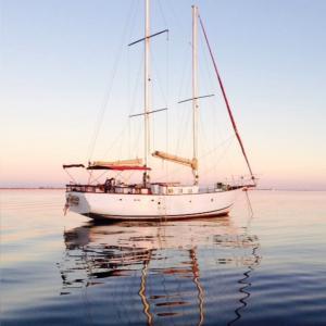 Photo of EL DJINN ship