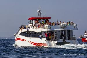 Photo of KONTIKI CINCO ship