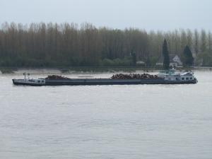 Photo of CENTAURE ship