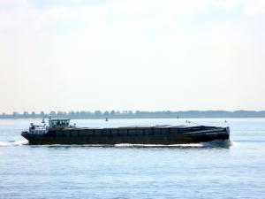 Photo of PALYSANDO ship