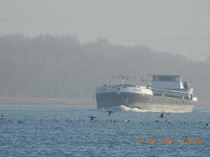 Photo of LOUKENA ship