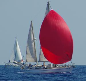 Photo of JELEM ship