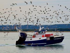 Photo of F/V LA PETITE MAYLIS ship