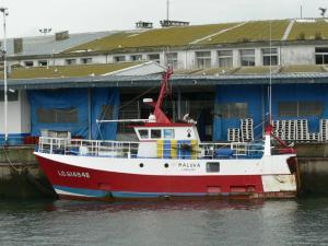 Photo of F/V MALUKA ship
