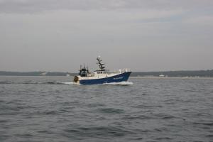 Photo of F/V P'TIT OURS ship