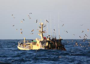 Photo of F/V MARIE-LOU ship