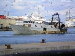 Photo of F/V ERCOLE LUCIE ship