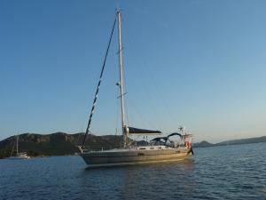 Photo of FREE VIKINGS ship