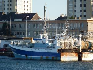 Photo of CORYDALIS ship