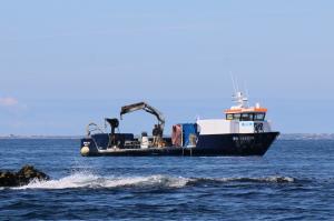 Photo of MYTILUS ship