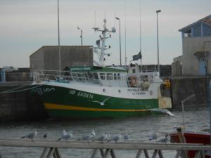 Photo of F/V NOUVELLE VAGUE ship