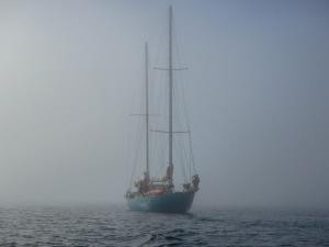 Photo of DJELALI ship