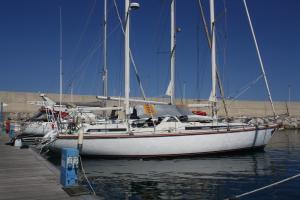 Photo of ALPHABET ship