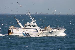 Photo of F/V SPES ship
