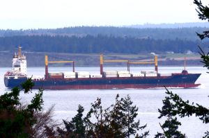 Photo of DANAE C ship