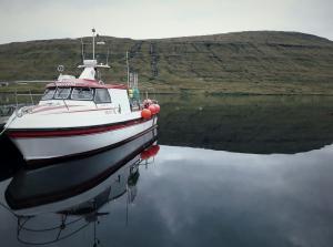 Photo of SILVITNI M/B ship