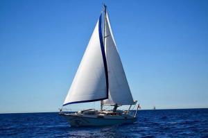 Photo of WAHOO ship