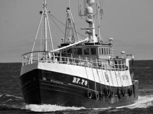 Photo of BF_79__BOUNTIFUL ship