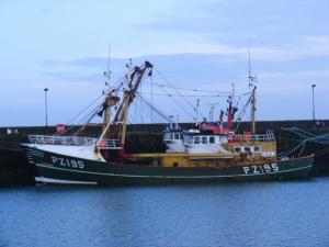 Photo of WILLIAM STEVENSON ship