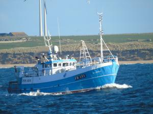 Photo of HELENUS FR121 ship