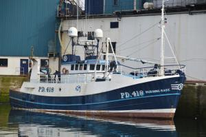 Photo of BUDDING ROSE PD 418 ship