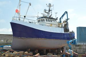 Photo of HEATHER SPRIG BCK181 ship