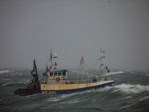 Photo of SARDONYX_BF206 _ ship