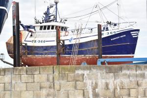 Photo of HARVEST MOON ship