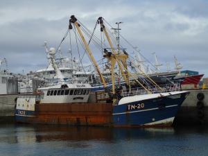 Photo of MFVSEALADY ship