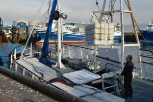 Photo of SUMMER\DAWN>PD97 ship