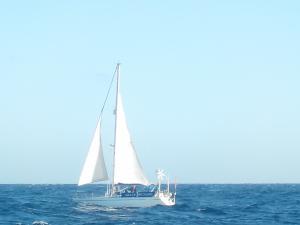Photo of GRACE RICHARD ship
