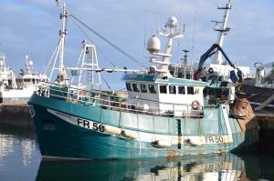 Photo of GV UBEROUS FR50 ship