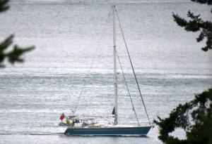 Photo of SV SANNA (UK) ship