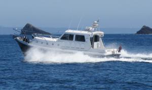 Photo of ALCHEMY ship